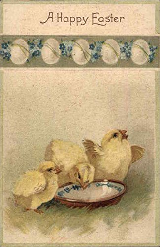 Three Chicks Drinking out of an Egg Shaped Bowl With Chicks Original Vintage Postcard