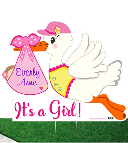 It's a Girl Custom Yard Stork Sign and Shh Baby Sleeping Door Hanger Kit - Personalized Birth Lawn Announcement - Outdoor Shower Party Decoration - Welcome Home Newborn Arrival ()