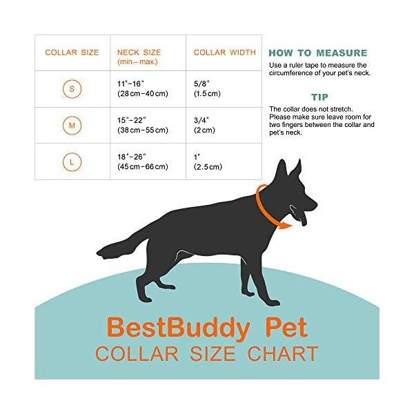 Bestbuddy Pet Unicorns and Rainbows Blue Fairytale Durable Nylon Designer Fashion Dog Collar Trendy Comfortable… 7