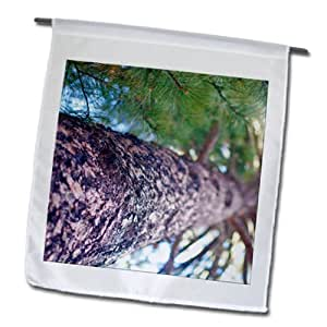 Jos Fauxtographee Realistic - From the ground looking up, a tall tree - 12 x 18 inch Garden Flag (fl_64298_1)