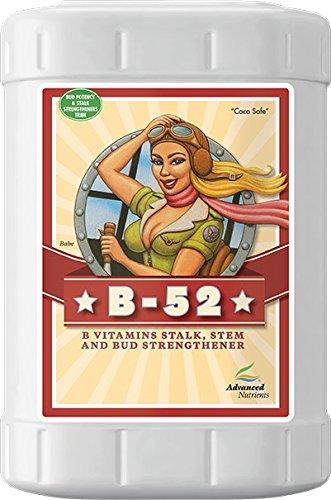 Advanced Nutrients 2100-17 B-52 Booster Fertilizer, 23 Liter, Brown/A