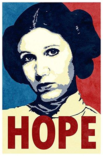 Laminated Hope Propaganda Sign Poster 12x18 inch