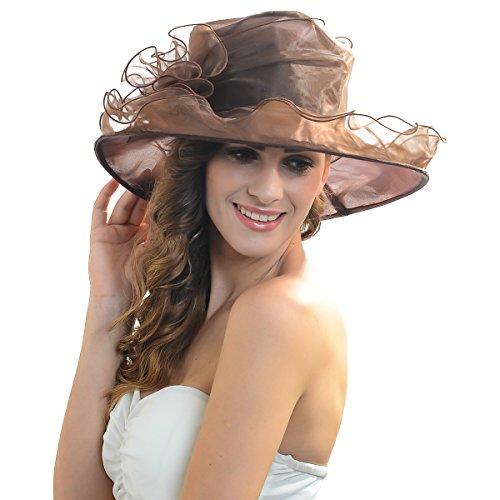 Fanny S037-pp Elegant Ladies Church Wedding Dress Derby Hat Floral Feather Wide Brim Organza Hat (S09-Brown)