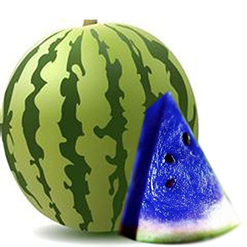10PCS Blue Watermelon Seeds Vegetable Organic Home Garden New Variety Plant (Organic Blue Corn Seeds compare prices)