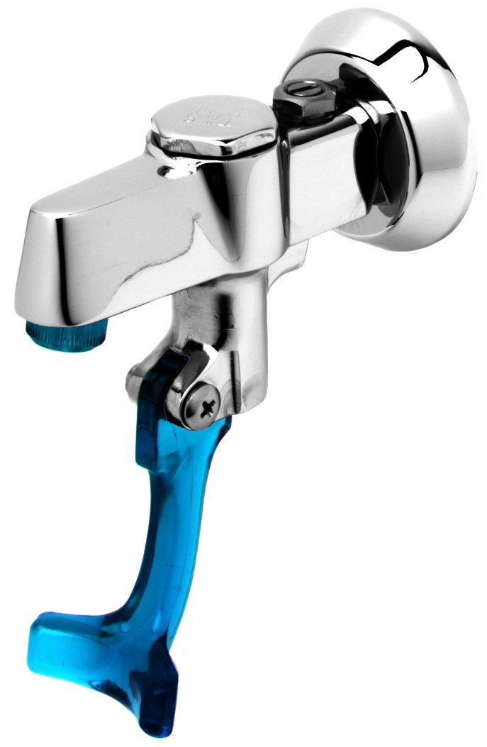 T&S Brass 5GF-W-F Wall Mount Glass Filler with 3/8-Inch Npt Female Inlet and Adjustable Flange