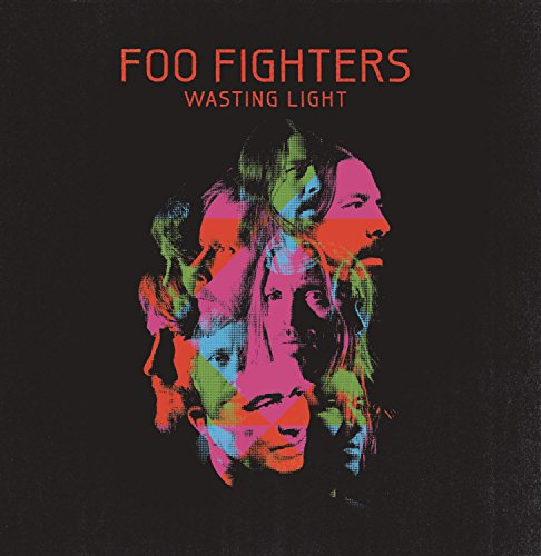 Wasting Light by VINYL