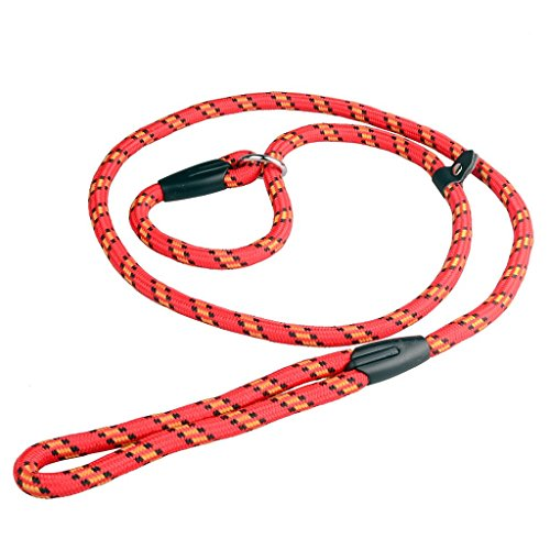 Zelta Adjustable 5-Feet by 3/8-Inch Width Nylon Slip Dog Lead Rope Leash, P-Leash and Collar in One (Red) (Dog Martingale Lead)