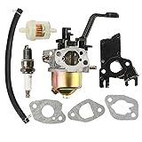 Panari Carburetor + Fuel Filter for Powerhorse 4000 DF2200 DF4000 DFD4000 4000ES 208CC 6HP DJ170N Generator