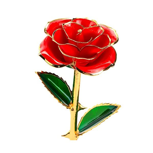 24k-Gold-Dipped-Rose-Flower-with-Long-Stem-Rose-Dipped-in-Gold-Gift-for-Women-Girls-on-Birthday-Valentines-Day-Mothers-Day-Christmas-Red