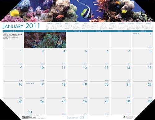 House of Doolittle 193 Sea Life Photographic Monthly Desk Pad Calendar, 22 x 17, -