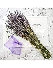 Dried Lavender Bundles, Total 250 Stems 100% Natural Lavender Bunch for DIY Home Party Wedding Decor