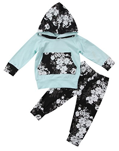 2pcs Infant Baby Girl Floral Hoodies with Pocket Pullover Tops+Vivid Flowers Print Long Pants Outfit (6-12 Months, Blue)