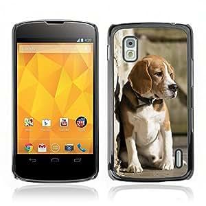 Carcasa Funda Case // V0000819 Dog Puppy Pattern // LG NEXUS 4