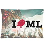 Pookeb I Love Music Festivals Mysteryland Poster Special Pillow Cover Design Cushion Case Custom Zippered Pillow Cases 20x30 (Twin sides) offers