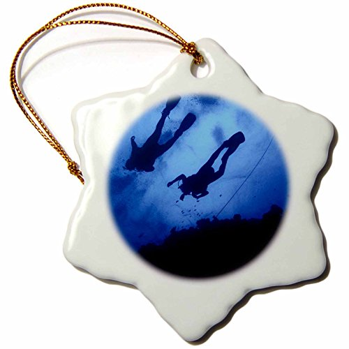 (3dRose Kike Calvo Underwater Life - scuba diving in the great reef barrier in Queensland, Australia - 3 inch Snowflake Porcelain Ornament (orn_45516_1))