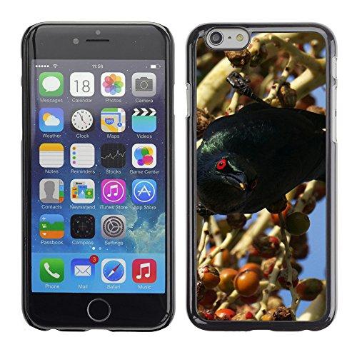 "Premio Sottile Slim Cassa Custodia Case Cover Shell // F00004734 oiseau noir // Apple iPhone 6 6S 6G 4.7"""
