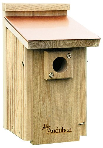 Bluebird Nest Box - Audubon Coppertop Cedar Wood Bluebird House Model NACOPBB