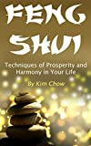 Feng Shui: Techniques of Prosperity and Harmony in Your Life