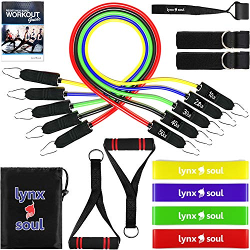 16 PCS Premium Pro Resistance Rubber Band Set by LYNXSOUL - Complete Exercise KIT - Door Anchor, Ankle Straps, Handles, Tube and Loop Bands Ideal for Training and Workout.