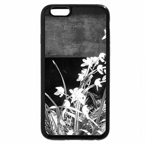 iPhone 6S Plus Case, iPhone 6 Plus Case (Black & White) - Alberta botanical garden 27 Orchids