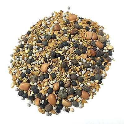 Clover Cover Crop Blend - 12 Seed BuildASoil Mix 60% Clover (1/2 lb) : Garden & Outdoor