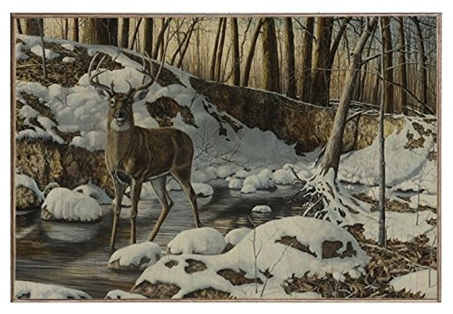 ArtFuzz River Bottom Buck 12X18 Wood Photo Board (Bottom Buck River)