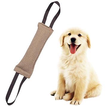 Legendog Juguete Remolcador De Perro Juguete De Entrenamiento para Perros Juguete De Mordedura De Perro Creativo Interactivo: Amazon.es: Productos para ...