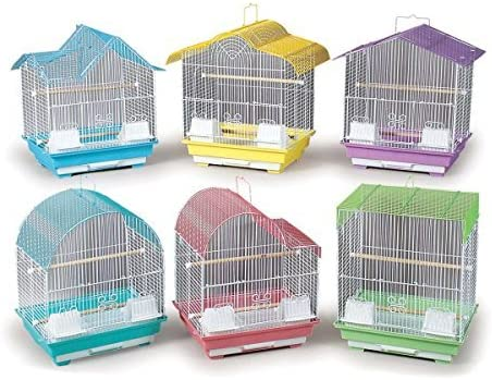 Amazon Com Prevue Pet Products Bpv22006 14 By 11 Inch 6 Pack Parakeet Cage Small Colors Vary Birdcages Pet Supplies