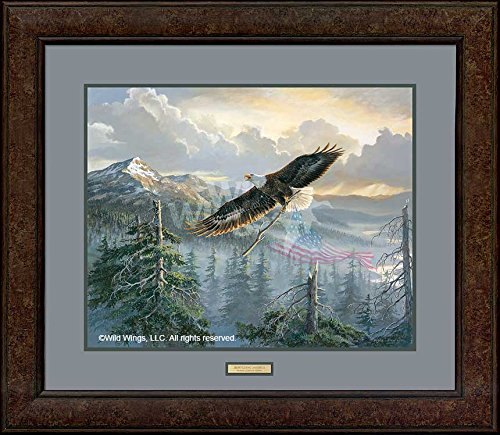 Rebuilding America - Eagle Framed Limited Edition Print by Persis Clayton Weirs