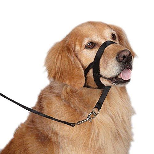 CL Domino Dog Behavior Training Anti Bite Nylon Head Collar(Black,L) ()