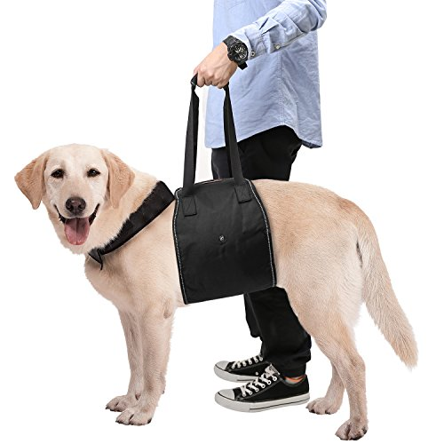 (Pawaboo Dog Support & Rehabilitation Harness, Dog Lift Canines Aid Assist Sling for Disabled, Injured, Elderly Pets Dogs, Help with Mobility to Stand Up, Climb Stairs and More, Large Size, BLACK)