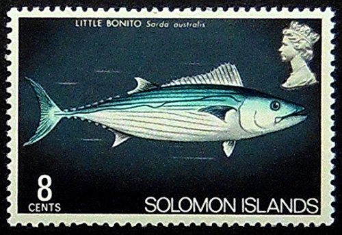 Little Bonito Fish Solomon Islands -Handmade Framed Postage Stamp Art 1382AM (Stamps Solomon Islands)