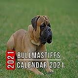 Bullmastiffs Calendar 2021: 12 Month Mini Calendar