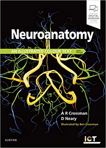 Neuroanatomy An Illustrated Colour Text Pdf