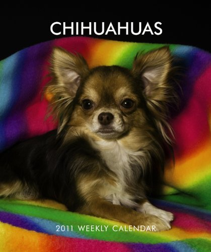 Chihuahua 2010 Calendar - Chihuahuas 2011 Hardcover Weekly Engagement by BrownTrout Publishers Inc (2010-06-28)