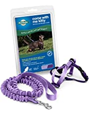 PetSafe Come with Me Kitty Harness and Bungee Leash, Harness for Cats, Large, Lilac/Bright Purple
