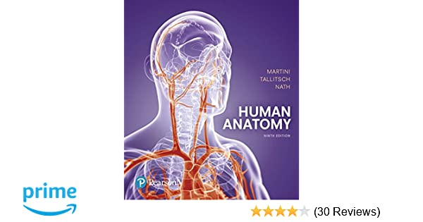 Human Anatomy (9th Edition): Frederic H  Martini, Robert B