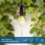 Hyperikon 2W LED S14 Filament Bulbs, Bulbs