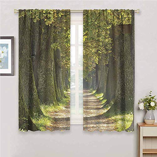 Vivid Environment Decor for Bedroom Blackout Curtains Alley with Oak Trees Scenic Perspective Picture Blackout Curtains for The Living Room W54 x L84 Inch Green Olive and Grey (Patio Oak Doors External)