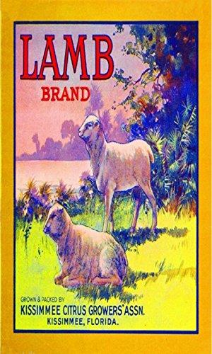 Kissimmee Florida Lamb Sheep Orange Citrus Fruit Crate Label Vintage Art Print