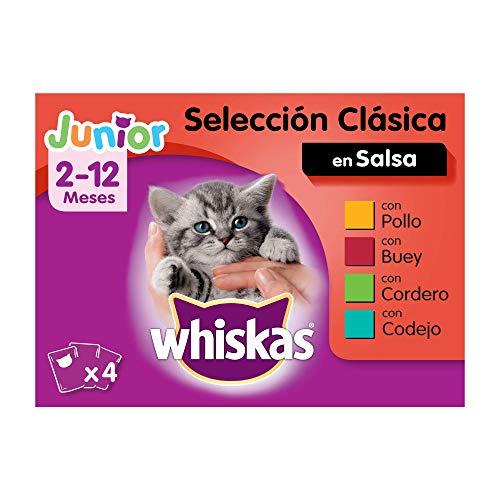 Whiskas Comida Húmeda para Gatos Junior Selección Carnes en Gelatina, Multipack (Pack de 13 x 4 bolsitas x 100g)
