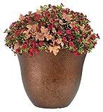 Classic Home and Garden Honeysuckle Patio Pot