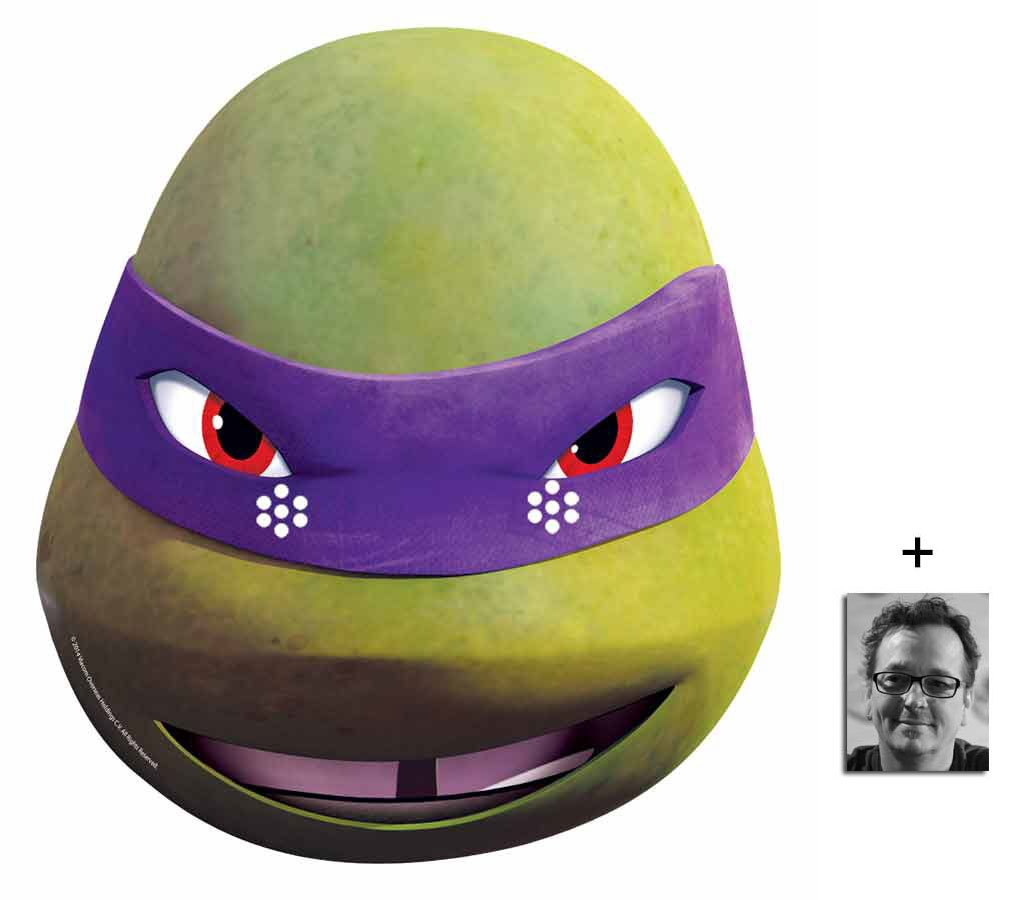 Donatello Teenage Mutant Ninja Turtles (Les Tortues Ninja) (TMNT 2015) Single Masque en carton de 2D Comprend une photo étoile (15x10cm)