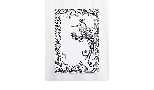Amazon com: Black and White Blue Buttons-Headed Hummingbird