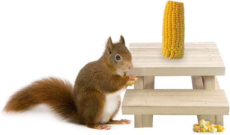 Squirrel Feeder For Outside Table Style - Environmentally Friendly Wood Squirrel Feeder for Outdoors Holds Corn and Apples - Squirrel Feeder Hangs Outdoors On Trees Fences Posts - By Nature's Hangouts