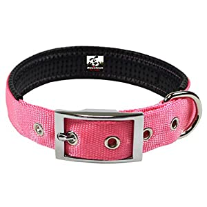 Deluxe Adjustable Thick Comfort Padded Dog Collar, Small, Pink, by Downtown Pet Supply