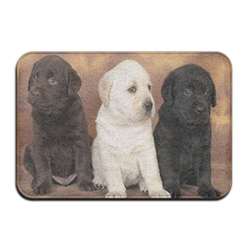 ies Black And White Unintentional Photography Rectangle Front Welcome Door Mat Outdoor Indoor Entrance Doormat Durable Heat-Resisting Non-Slip Rug Size 23.6x15.7 Inches ()