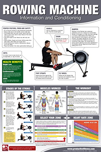 Rowing Machine Poster Chart Laminated product image