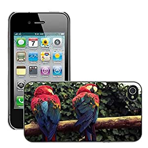 Hot Style Cell Phone PC Hard Case Cover // M00046470 parrots birds scarlet macaw animals // Apple iPhone 4 4S