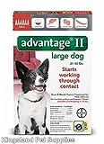 Bayer Advantage II, Large Dogs, 21 to 55Pound, 6Mo...
